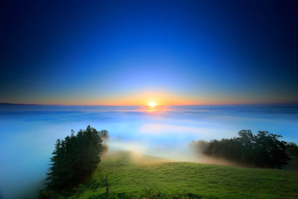 大雲海の朝