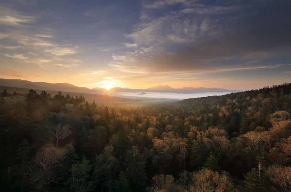 大雪山 三国峠からの朝焼けと紅葉